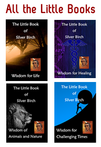 All Four Titles in the Silver Birch Little Book Series